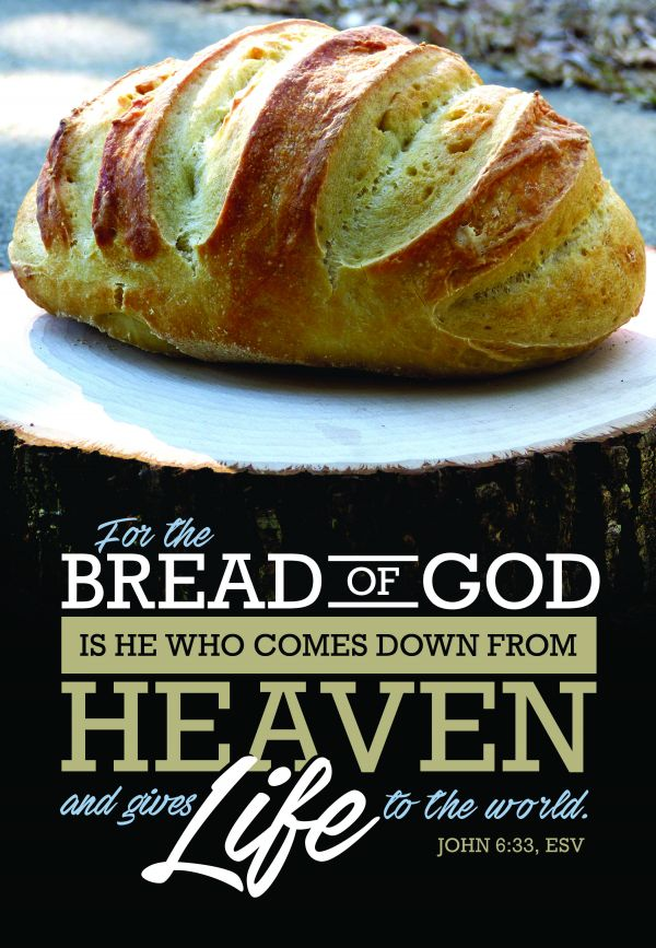 What good is the Bread of Life when so many people in the world go hungry?